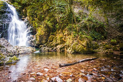 Navarra-Wasserfall Stockfoto