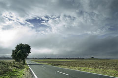 Navarre Road. With the view of the city of Logroño at the bottom Stock Image