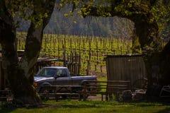 Navarro-Familien-Weinkellerei nahe Philo CA Lizenzfreies Stockbild