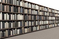 Navata laterale dello scaffale per libri delle biblioteche Fotografia Stock
