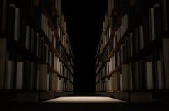 Navata laterale dello scaffale per libri delle biblioteche Immagini Stock Libere da Diritti