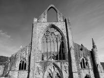 Nave ad ovest dell'abbazia di Tintern, Galles Fotografia Stock