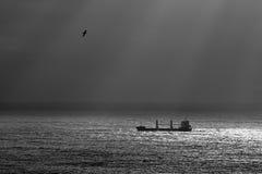 Nave da carico sull'oceano Fotografia Stock Libera da Diritti