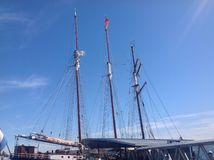 Nave de podadoras en puerto Foto de archivo