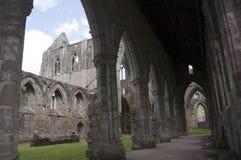Nave dell'abbazia di Tintern nel Galles Fotografie Stock Libere da Diritti