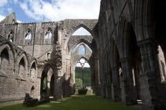 Nave dell'abbazia di Tintern nel Galles Fotografia Stock Libera da Diritti