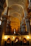 On nave katedra MalagaSpagna Zdjęcia Royalty Free