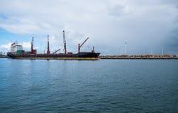 Nave porta-container al porto del porto di Whangarei fotografia stock libera da diritti