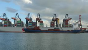 Nave porta-container enorme stock footage