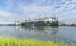 Nave porta-container in porto Fotografia Stock