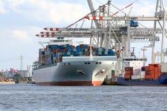 Nave porta-container sul terminale Fotografie Stock