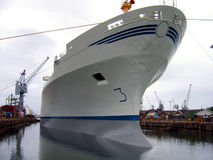 Nave porta-container in un bacino del cantiere navale Immagine Stock Libera da Diritti