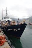 Nave turistica sul molo, Sudafrica Immagine Stock