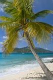 Navegación de las islas de la palmera Fotografía de archivo libre de regalías