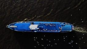 Navegación del barco de cruceros a través del río - cantidad aérea Muchas gaviotas cerca del trazador de líneas almacen de video