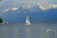 Navegación del barco en el lago alpestre Maggiore imagenes de archivo
