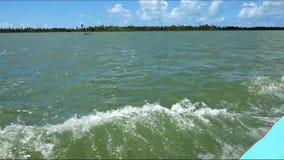 Navegación en las aguas tropicales, río de San Francisco, el Brasil metrajes