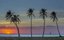 Navegación a la puesta del sol tropical Imágenes de archivo libres de regalías