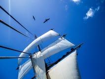Navegando en el mar en un tallship, cielos azules Fotografía de archivo libre de regalías
