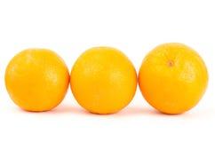Navel orange fruit Stock Photography