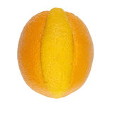 Navel orange with a twist Stock Photos