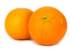 Navel oranges on white background Stock Image