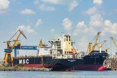 Navi da carico in serie messe in bacino Immagini Stock Libere da Diritti