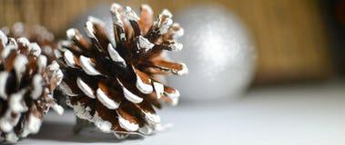 Navidad Año Nuevo conos Decoraciones de la Navidad Foto de archivo libre de regalías
