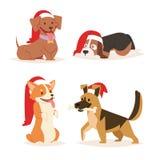 Navidad de la historieta del vector del perro de la Navidad diversa del perrito de los caracteres del ejemplo del hogar del perri Imagenes de archivo