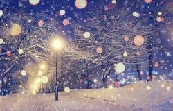 Navidad del fondo en la noche del invierno Foto de archivo libre de regalías