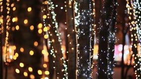 Navidad Troncos de árboles en la iluminación que brilla intensamente festiva en la calle de la ciudad en la noche Primer Tema del almacen de video