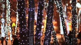 Navidad Troncos de árboles en la iluminación que brilla intensamente festiva en la calle de la ciudad en la noche Transeúntes que metrajes
