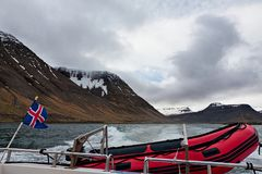Navigação da bandeira islandêsa e do barco de borracha em um fiorde, Islândia Imagens de Stock Royalty Free