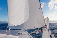 Navigação do catamarã do iate da navigação no mar Sailboat sailing imagens de stock royalty free