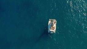 Navigação do catamarã no mar Tiro aéreo da navigação do catamarã no vento video estoque