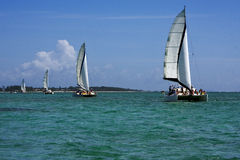 Navigable  froth  catamaran and coastline Stock Photography
