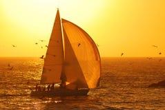 Navigando al tramonto Immagine Stock
