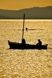 Navigando sul campo dorato Fotografia Stock Libera da Diritti
