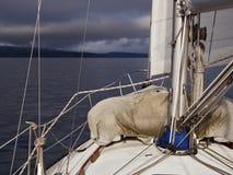 Navigation dans une tempête Images libres de droits