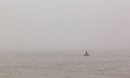 Navigational buoy and seagull in the sea on the morning mist Stock Photo
