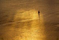 Navigazione del mare dorato Fotografia Stock