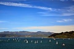 Navigazione del regatta dell'yacht Fotografia Stock
