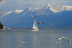 Navigazione della barca sul lago alpino Maggiore Immagini Stock