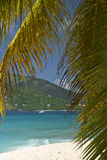 Navigazione della palma dell'isola Fotografie Stock Libere da Diritti