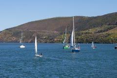 Navigazione della regata in Knysna Sudafrica fotografia stock libera da diritti