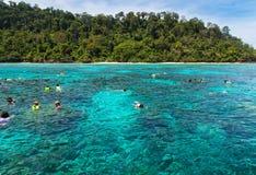 Naviguant au schnorchel chez Koh Rok, mer d'Andaman, THAÏLANDE Images stock