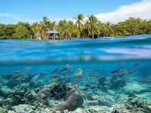 Naviguer au schnorchel au Panama Photo libre de droits