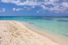 Naviguer au schnorchel dans Tortugas sec Images libres de droits
