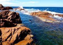 Naviguer au schnorchel dans une piscine de marée de roche Photo libre de droits