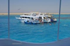 Naviguer au schnorchel en Mer Rouge Photographie stock libre de droits